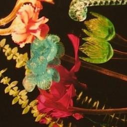 Выставка «Flower Power»