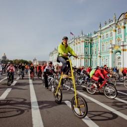 Маршрут Большого Велопарада - 2019