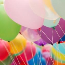 День рождения «Экзоопарка»