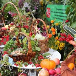 Праздник сбора урожая и закрытия фонтанов в Летнем Саду 2017