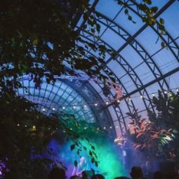 В оранжерее  «Концерт для Цветов»