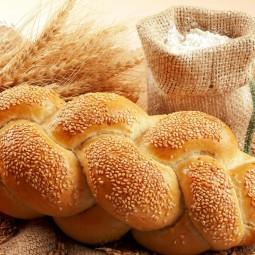 Выставка  «Целебная сила хлеба»