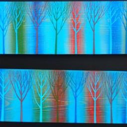 Выставка Выставка «Северное направление: нашествие цвета - 2»
