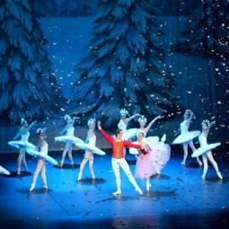 Показ балета  «Щелкунчик» в Новой Голландии