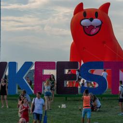 Онлайн-фестиваль VK Fest-2020