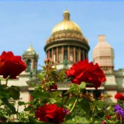 Топ-10 интересных событий в Санкт-Петербурге на выходные с 10 по 12 июня