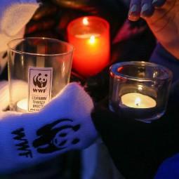 Общегородской Час Земли в парке «Сказок» 2018