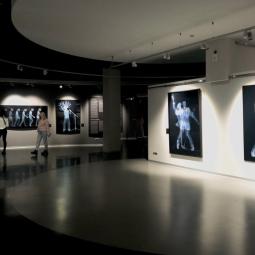 Выставка «X-Ray Men» в музее Эрарта