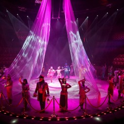 Шоу «Принц цирка»