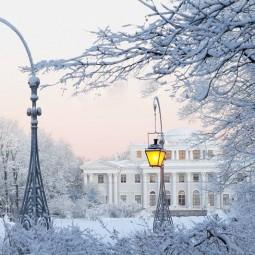 Топ-10 интересных событий в Санкт-Петербурге на выходные 1 и 2 декабря