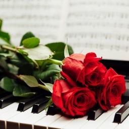 Концерт фортепианного искусства «Белое и чёрное» 2020
