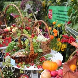 Праздник закрытия фонтанов и сбора урожая в Летнем саду 2016
