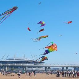 Фестиваль воздушных змеев «Летать легко!» 2020