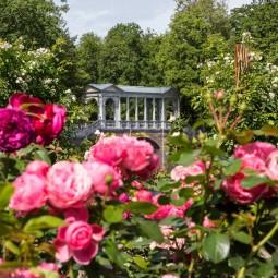 Открытие летнего сезона в музее-заповеднике «Царское Село» 2021