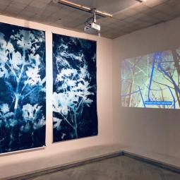 Выставка работ номинантов Премии имени Сергея Курёхина 2020