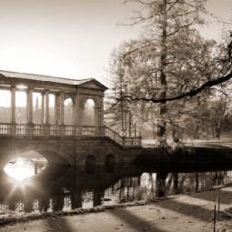 Выставка «Сады и парки Петербурга и его окрестностей»