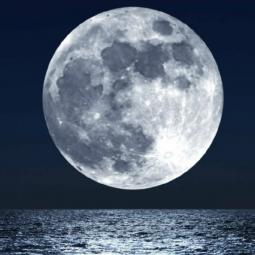 Фестиваль «Орган в Планетарии. Белые Ночи»