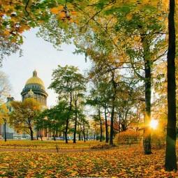 Топ-10 интересных событий в Санкт-Петербурге на выходные 8 и 9 сентября