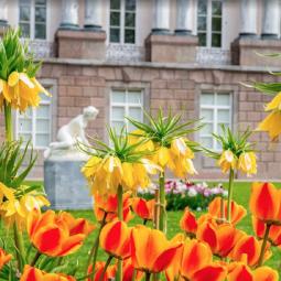 Топ-10 интересных событий в Санкт-Петербурге на выходные 18 и 19 мая 2019