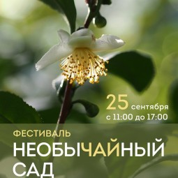 Фестиваль «Необычайный сад» 2016