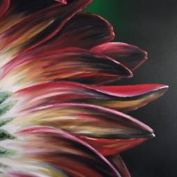 Выставка «Красота она рядом»