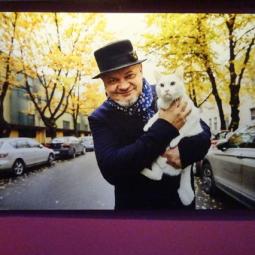 Фотовыставка «Главные котики Петербурга»