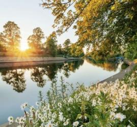 Открытие парков в Санкт-Петербурге лето 2020