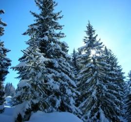 Всероссийский День снега в рамках «Лыжных стрел» 2018