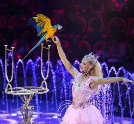Шоу «Волшебные фонтаны — 13 месяцев»