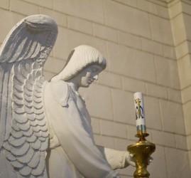 Органные концерты в Римско-католическом соборе Успения Пресвятой Девы Марии