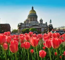 Топ-10 интересных событий в Санкт-Петербурге на выходные 26 и 27 мая