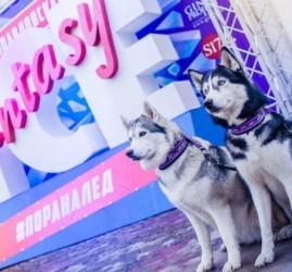 Фестиваль ледовых скульптур «Ice Fantasy — 2018»