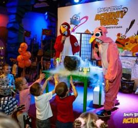 Активные каникулы для детей в Angry Birds Activity Park