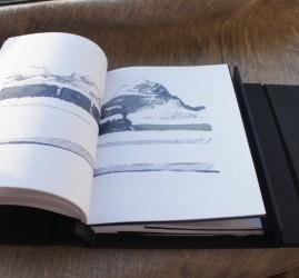 Выставка «Книга как объект»
