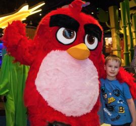 Скидка на посещение Angry Birds Activity Park