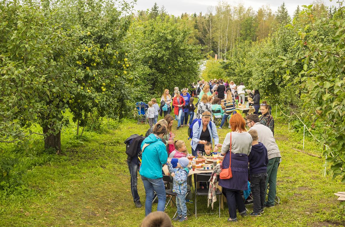 Праздник «Яблочный полдень» вЦарском Селе 2017