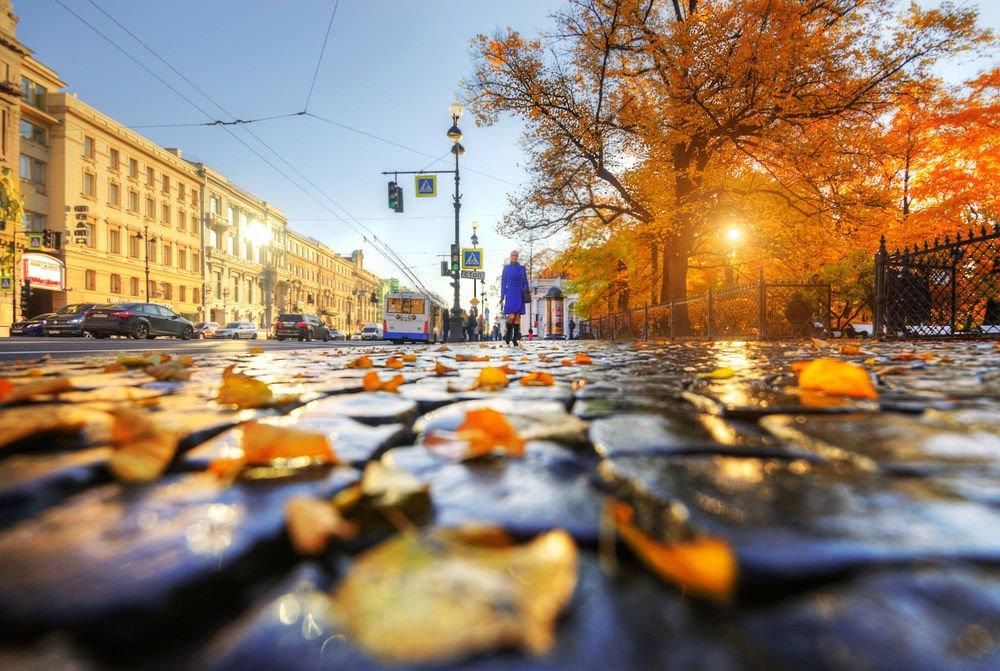 Топ-10 интересных событий вСанкт-Петербурге навыходные 12 и13 октября