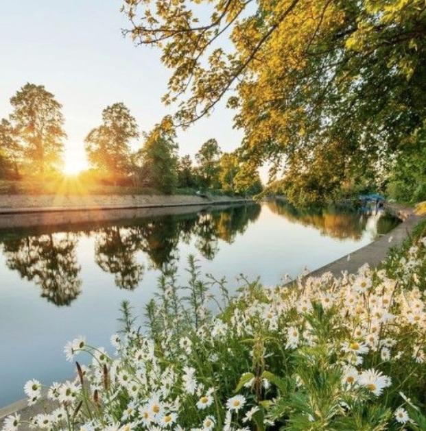 Открытие парков вСанкт-Петербурге лето 2020