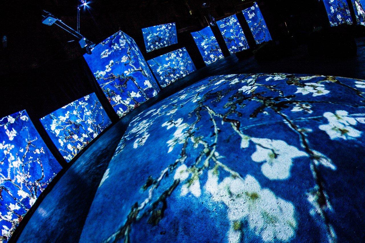 Выставка «Ван Гог— Живые полотна»