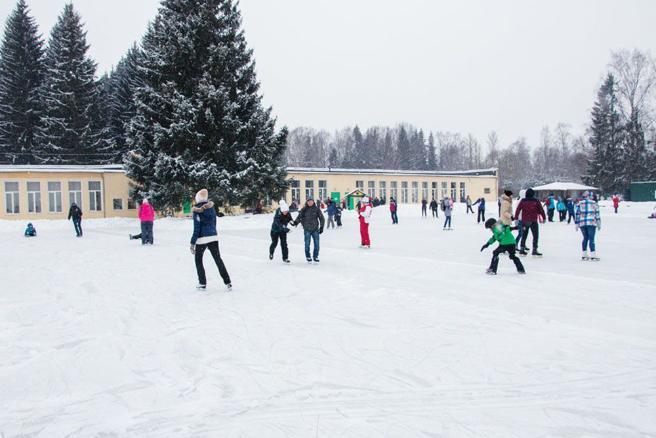 Ледовый каток вПавловском парке 2017