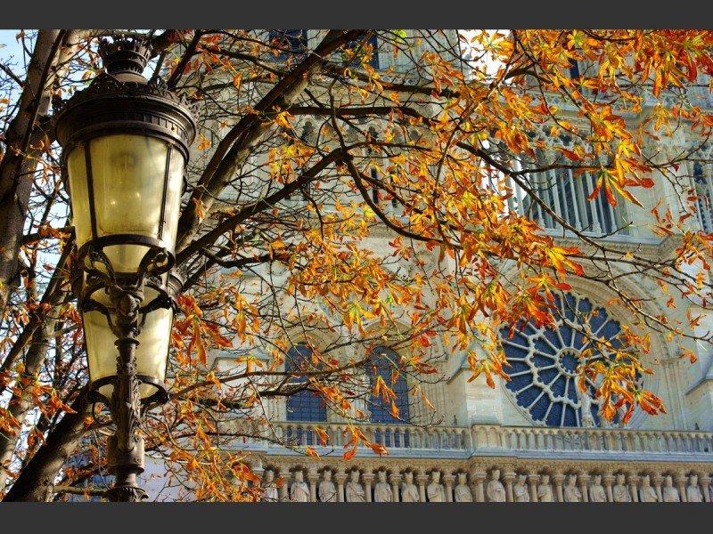 Фестиваль «Парижская Осень» 2016
