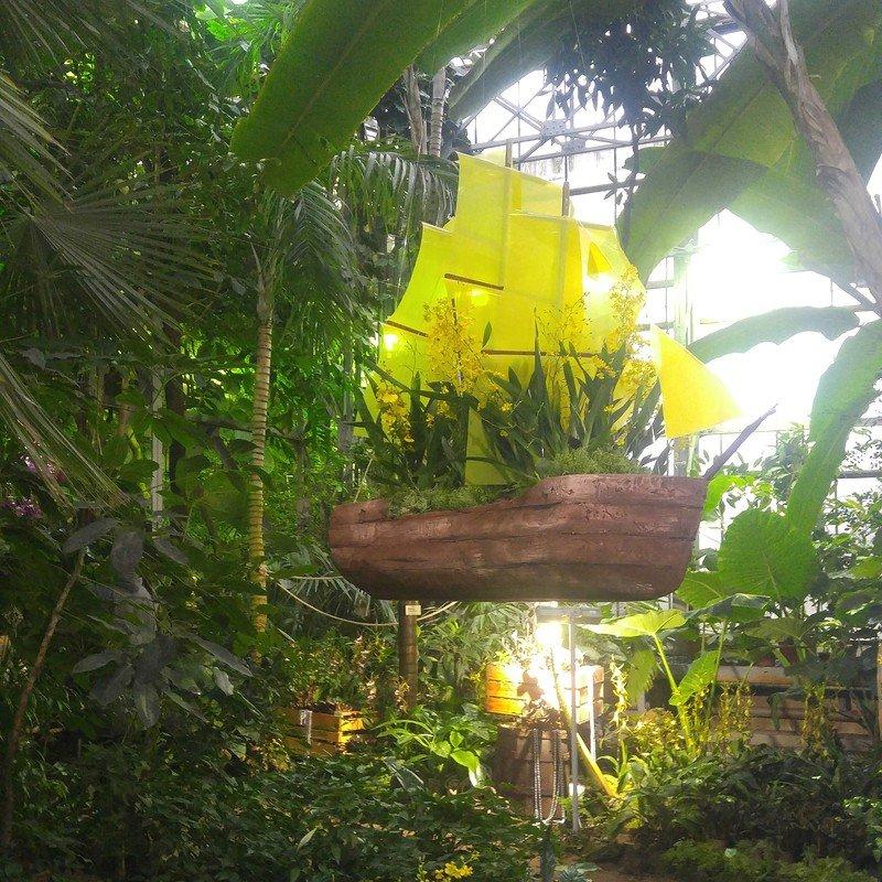 Выставка орхидей вБотаническом саду 2016