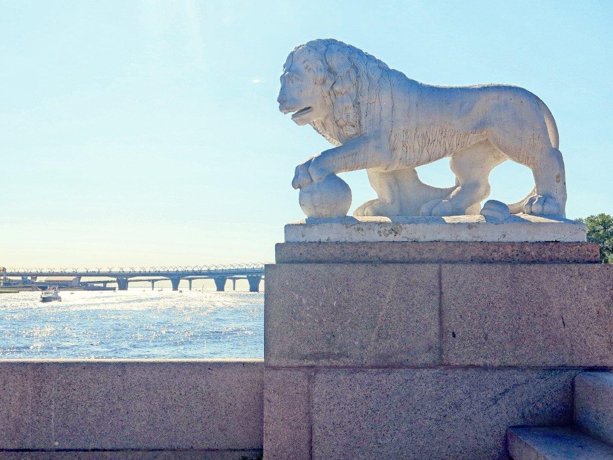Посещение Центрального парка имени С. М. Кирова осень 2020