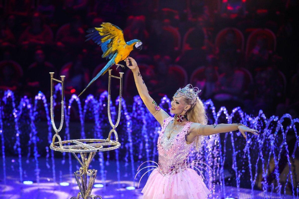 Шоу «Волшебные фонтаны— 13 месяцев»