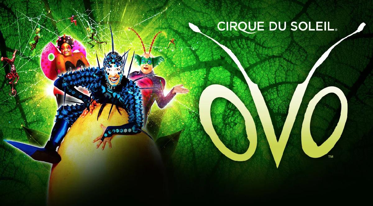 Шоу «OVO Cirque duSoleil»