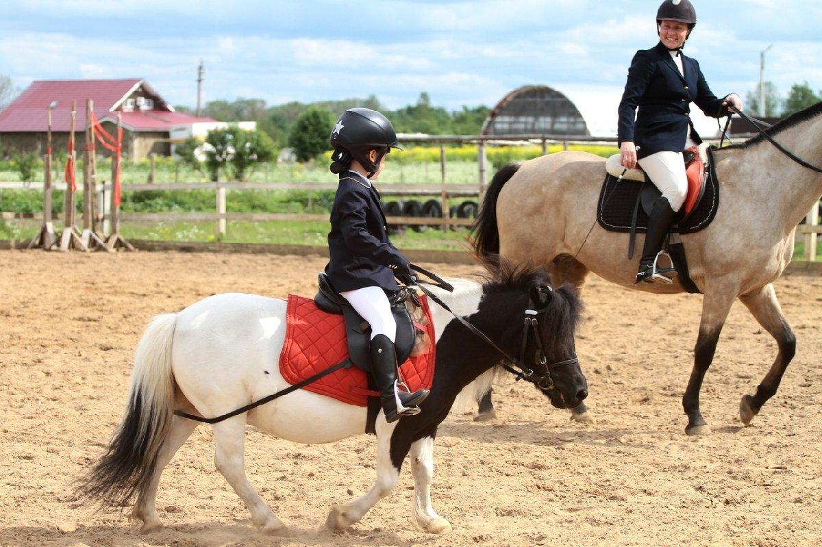 Конный клуб Western Horse