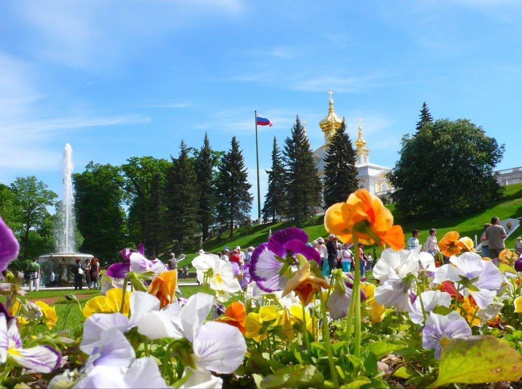 Топ-10 интересных событий вСанкт-Петербурге навыходные 25 и26 июля 2020