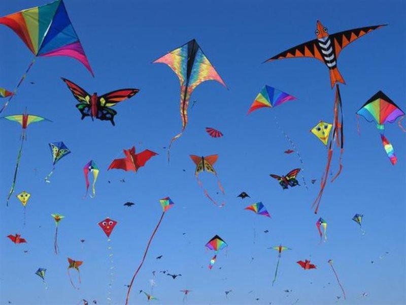 Фестиваль воздушных змеев вНовой Голландии