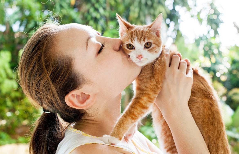 Выставка кошек «Старый-новый КОТ»