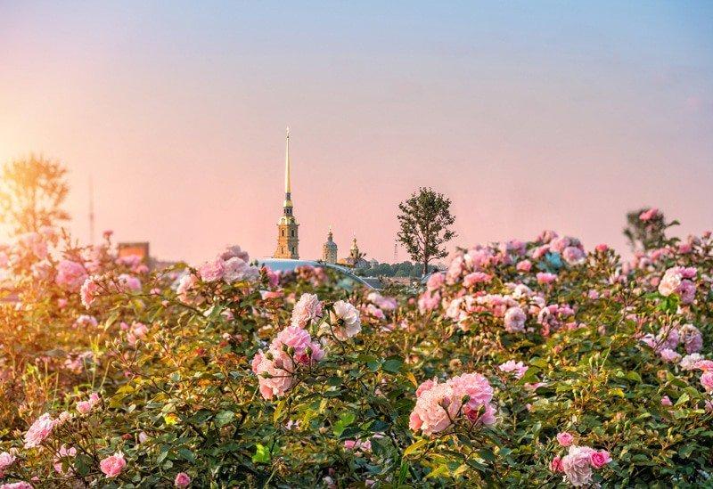 Топ-10 интересных событий вСанкт-Петербурге навыходные 19 и20 мая